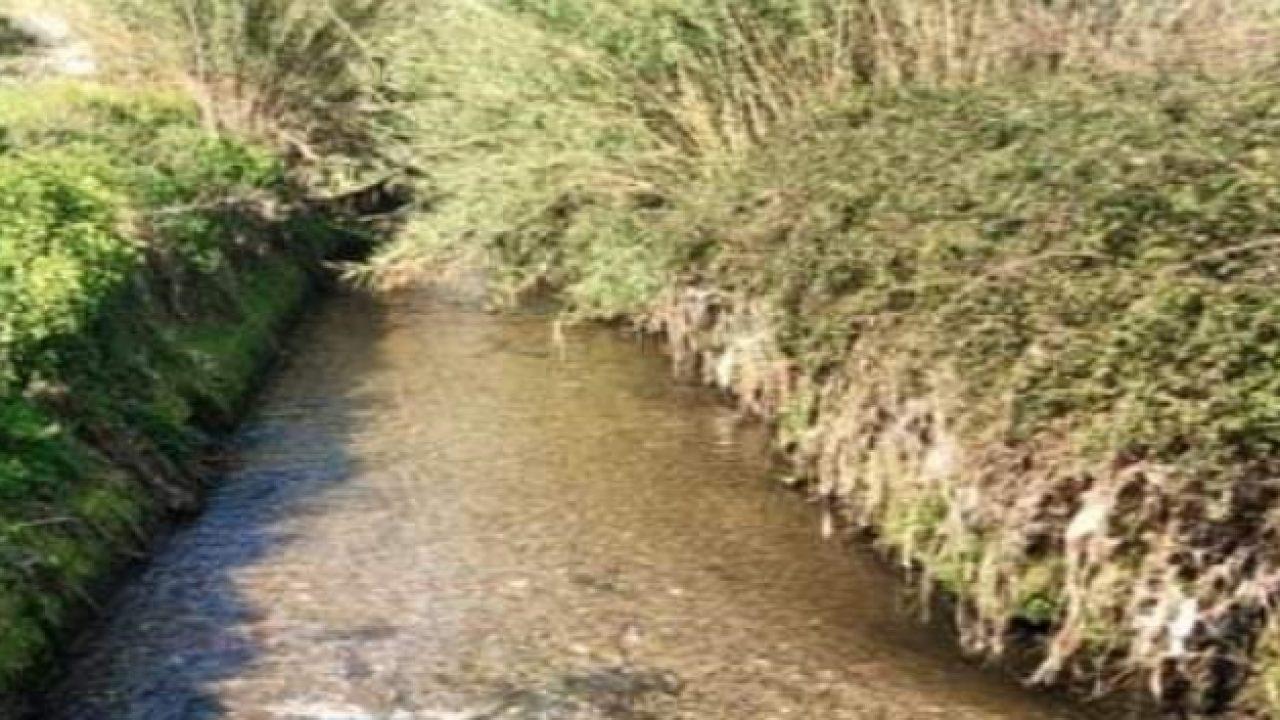 Il fiume Sarno sta meglio. Tutto merito del lockdown
