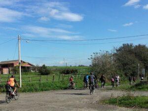 AGRICOLTURA. PD COMUNE ROMA: M5S SI OPPONE A RILANCIO CASTEL DI GUIDO