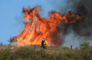 Incendi boschivi: l'appello del direttore provinciale Acli di Latina