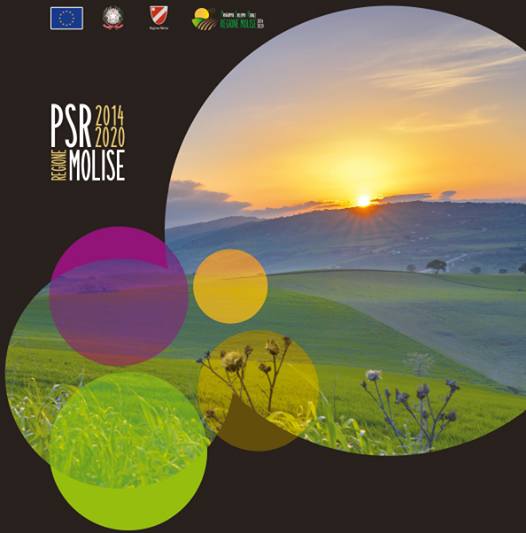MOLISE, RIUNIONE PSR FEASR 2014/2020, TOMA: SIAMO AL DI SOPRA DELLA MEDIA EUROPEA PER EFFICIENZA DI SPESA