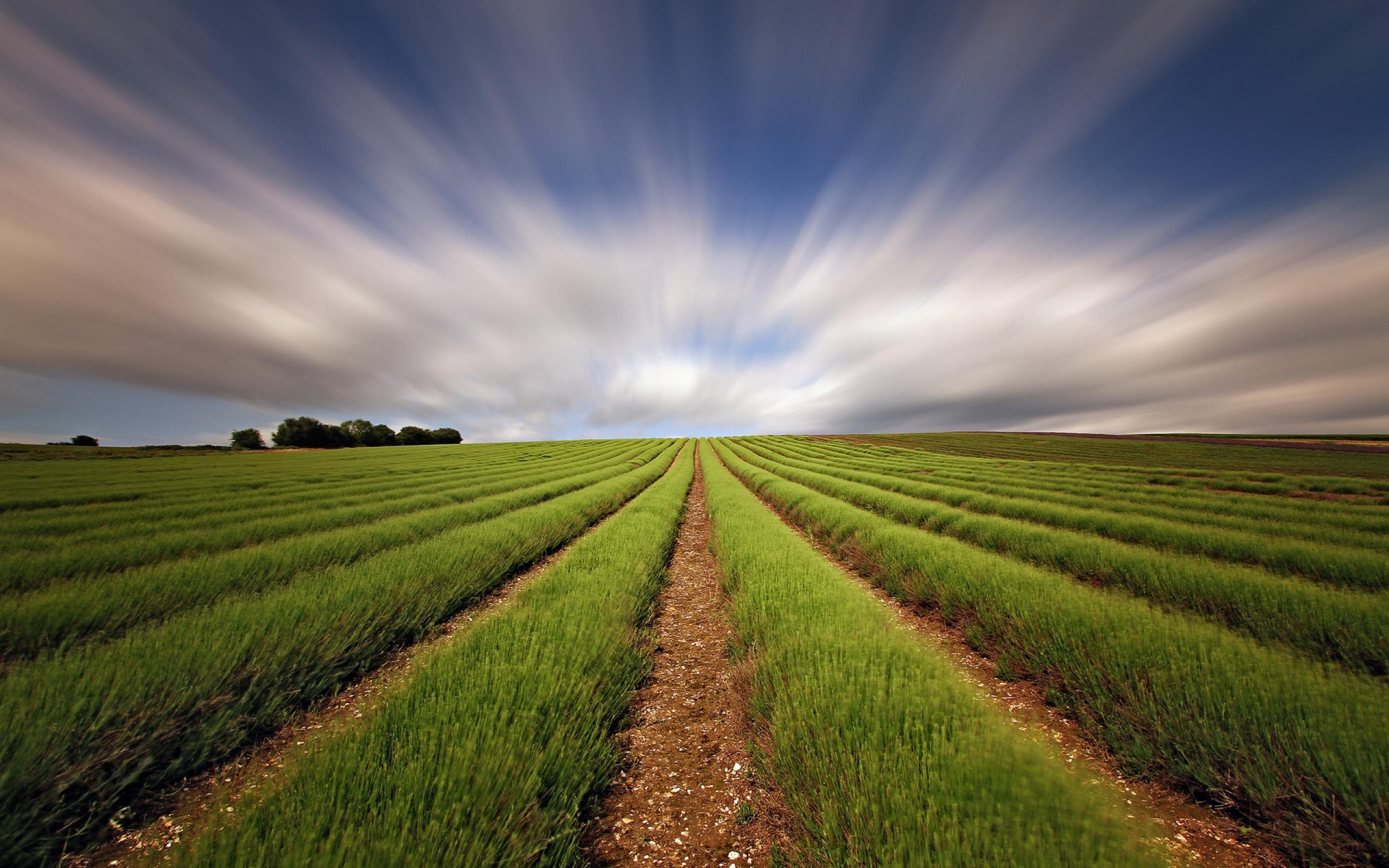 SOVRAINDEBITAMENTO PMI.IMPRENDITORI AGRICOLI E COLTIVATORI DIRETTI: RIPARTIRE SI PUO'