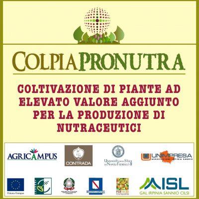 ColpiaPronutra_foot